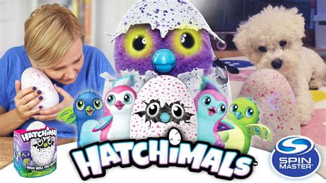 hatchimals jajko spin master unboxing czesc  youtube