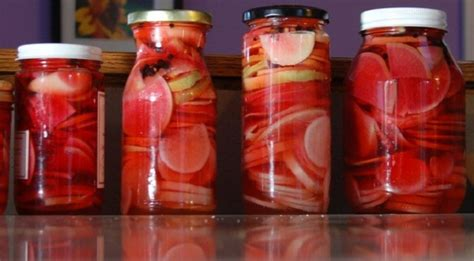 top   preserved vegetable  fruits recipes top
