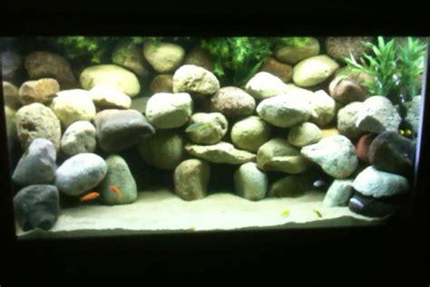 buckmarks freshwater tanks details   photo
