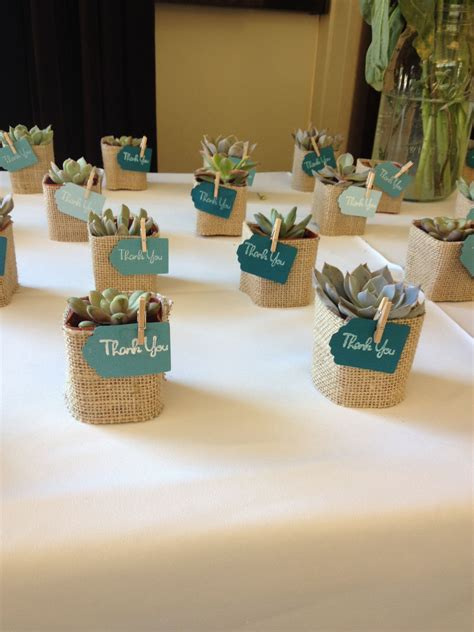 Succulent Favors Baby Showers Wedding Ts Wedding
