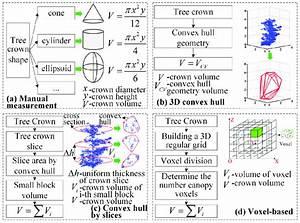 Schematics Of Four Tree Crown Volume Calculation Methods