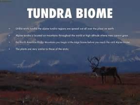 Alpine Decks by Tundra Biome By Jacob Chadderdon