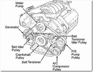 Service Manual  Diagram To Install Serpentine Belt 2000