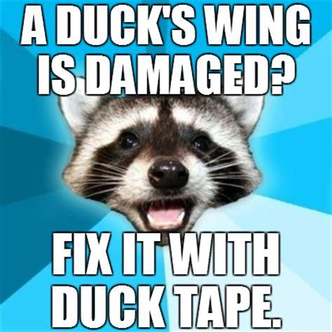Lame Pun Coon Meme - lame pun coon duck tape by inf3ct3d d3m0n on deviantart