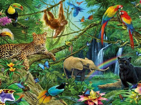 animals  jungle leopard puma elephant chimpanzee