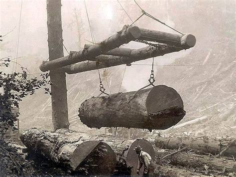 images  logging  sawmills  pinterest