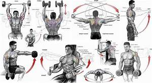 Shoulder Workouts For Mass  Trapsworkout Shoulder Workouts For Mass