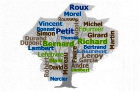 nom de famille quelle est origine et lesquels sont les plus port 233 s