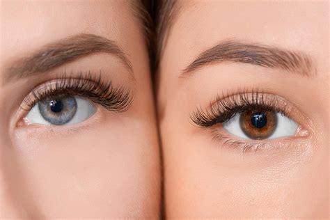 Eye Lash eyelash extensions fresh