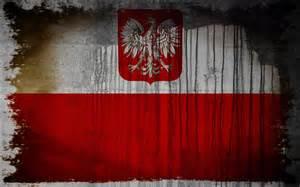 High Resolution Polish Flag