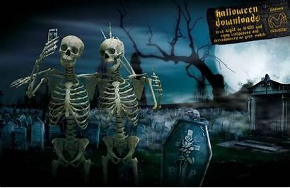 Skeleton Halloween Dancing Skeletons Wallpapers Spooky Funny