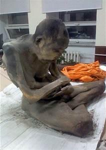 buddhist expert 200 year mummified monk isn 39 t