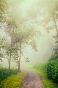 Foggy Blue Ridge Parkway