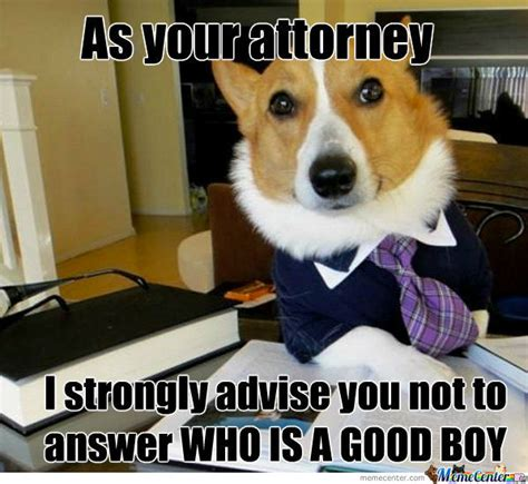 Dog Lawyer Meme - lawyer dog strikes again by spawzing meme center
