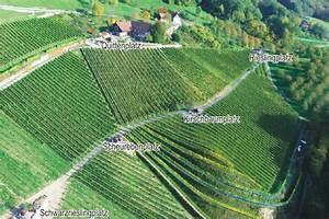 Schlafen Im Weinfass Sasbachwalden : giant wine barrel room overlooks the black forest in germany inhabitat green design ~ Eleganceandgraceweddings.com Haus und Dekorationen