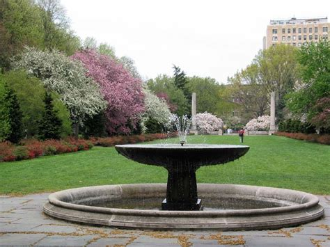 landscaping water fountains garden with a fountain landscaping gardening ideas