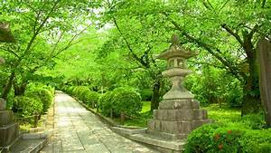Cheap Flights To Kyoto  Japan  324 90 In 2017