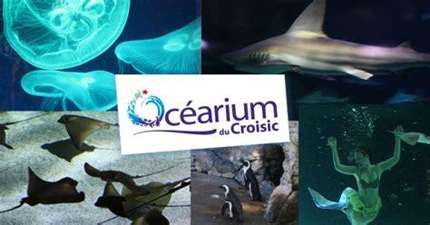 ocearium du croisic aquarium loire atlantique rdvludique