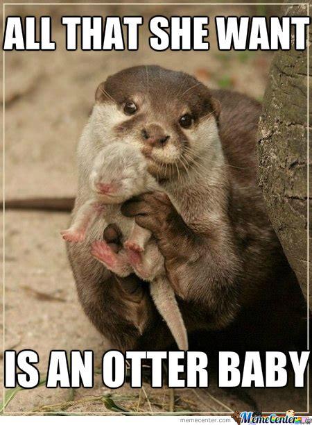 Sea Otter Meme - ace of otters by josef sg2000 meme center