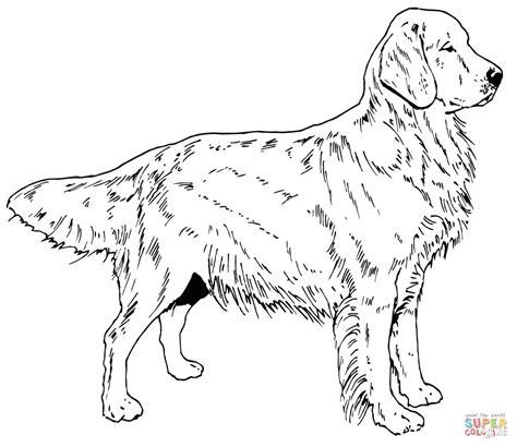 jumping labrador retriever coloring page free printable