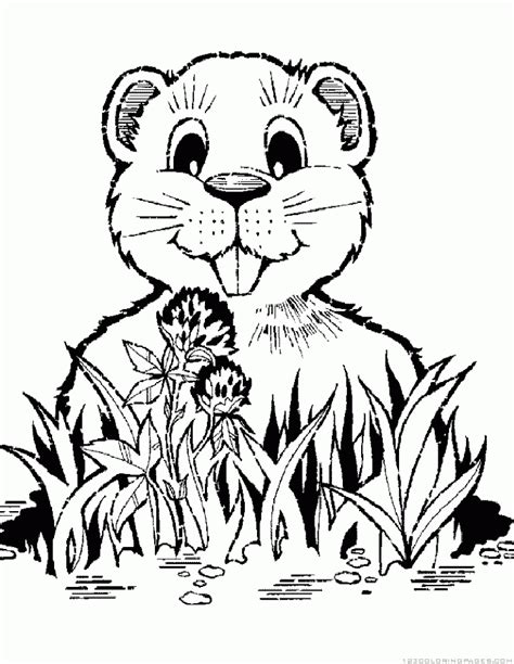 gopher coloring pages part