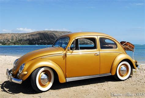 gold volkswagen beetle vw bugs and gold on pinterest
