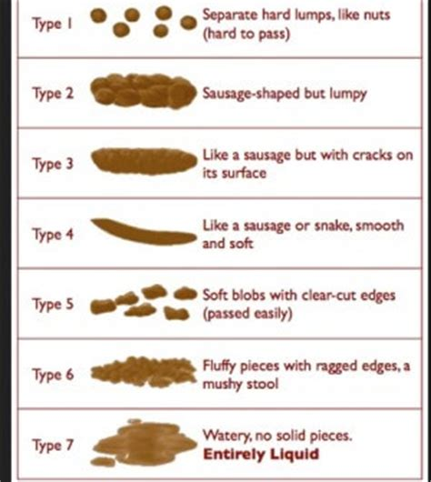 c diff stool color constipation an ayurvedic perspective ayurveda