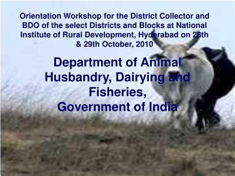 krishna district  operative central bank  recruitment