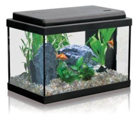 installer premier aquarium
