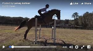 Sharpen Up with This #GOTD from Laine Ashker | Eventing ...