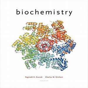 Biochemistry Garrett 5th Edition Solutions Manual Pdf