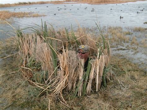 Duck Hunting Boat Blind Tips by 215 Best Images About Waterfowl Hunting On Pinterest