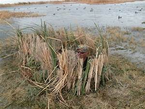 215 Best Images About Waterfowl Hunting On Pinterest