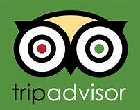 Image result for trip advisor logo