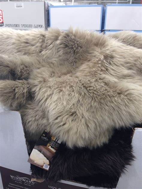 sheepskin rug costco  greybeige  approx
