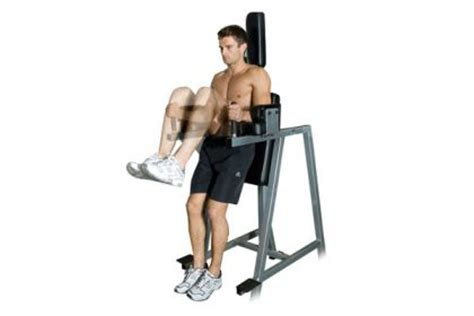 abs chair knee raises vertical leg raise bodybuilding wizard