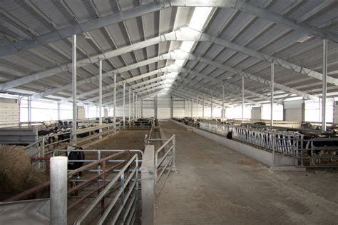 Pack/freestall Shelter Is Shown In Figure 9 For A 100-cow