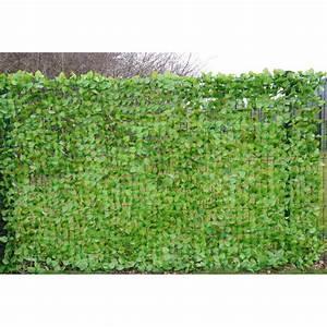 Arbuste Brise Vue : brise vue filet charme 2 m x 3 m convient pour l 39 ext rieur ~ Preciouscoupons.com Idées de Décoration