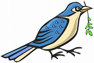 Free Animated Bird Cliparts, Download Free Clip Art, Free ...