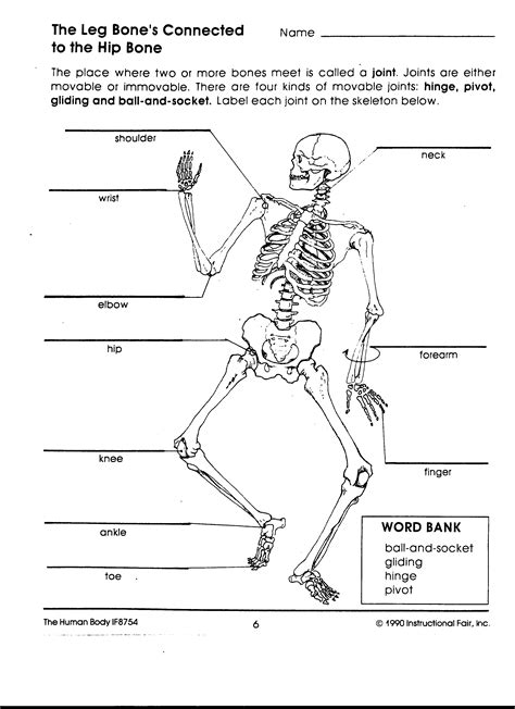 joints of the worksheet search pinteres