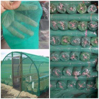 Insect Net Screen Net jual insect net hijau harga murah bibitbunga