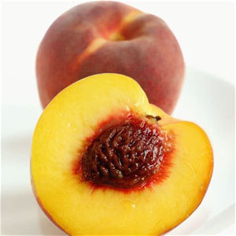 fruits with pits most dangerous foods poisonous foods that kill