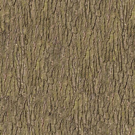 tree bark texture paramecij s tree trunks and stumps texture pack 1 vegetation tree bark 40 png opengameart org
