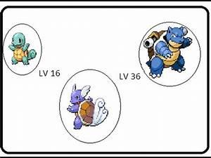 Squirtle Evolution Names | www.pixshark.com - Images ...
