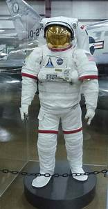 A Space Suit 2013 - Pics about space