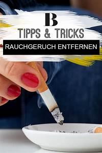 Rauchgeruch Entfernen Wohnung Schnell : 243 besten haushalt bilder auf pinterest ~ Watch28wear.com Haus und Dekorationen
