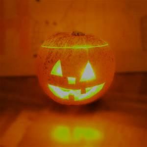Gruselige Halloween Deko : gruselige halloween deko f r den garten hammerkauf ratgeber blog ~ Markanthonyermac.com Haus und Dekorationen