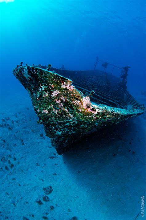 scuba diving  tahiti topdive