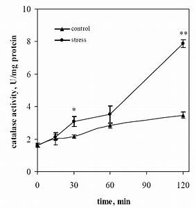 Time Course Of Catalase Activity In S  Cerevisiae Yph98
