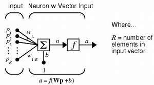 Simple Neuron Structure Source  Neural Network Toolbox For